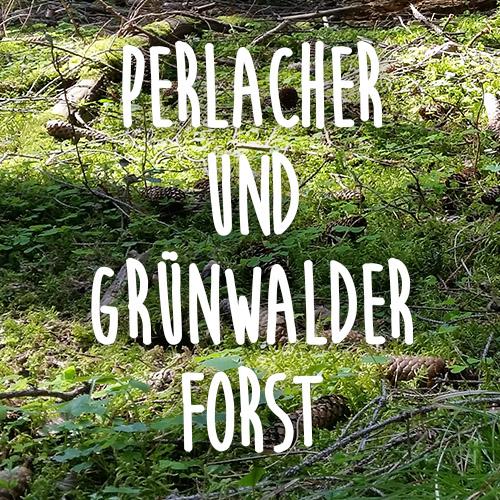 Perlacher und Grünwalder Forst